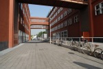BICOCCA, ATENEO FESTEGGIA DECENNALE - FOTO 13